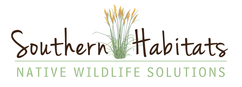 Southern Habitats: Native Wildlife Solutions