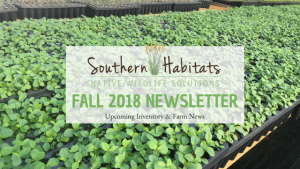 Fall Inventory & New Greenhouse