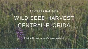 Seed Harvest Video